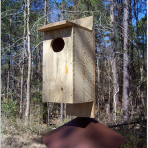 Duck house predator guard